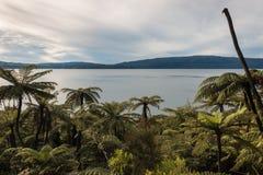 Sunset over lake Tarawera Stock Photo