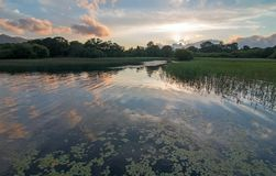 Sunset over Lough Leane [Lake Leane] with water lillies on the Ring of Kerry in Killarney Ireland. Sunset over Lough Leane [Lake Leane] with water lillies on the royalty free stock image