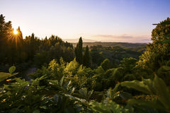 Sunset over the lush landscape in Tuscany Royalty Free Stock Photography