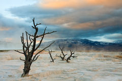 Sunset Over Mammoth Hot Springs Royalty Free Stock Photo