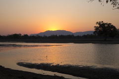 Sunset over Mana Pools. Sunset over the Zambezi river in Mana Pools Royalty Free Stock Photography