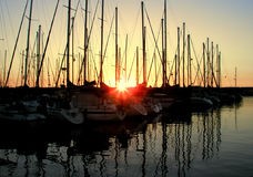 Sunset over the marina. Sunset with silouetts of masts and reflections royalty free stock image