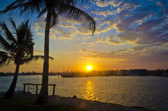 Sunset over marina with palmtree Royalty Free Stock Photography