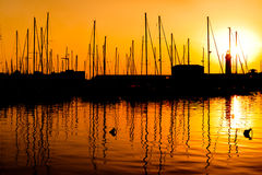 Sunset over the marina in Trieste. Sunset over the marina harbour in Trieste Royalty Free Stock Image