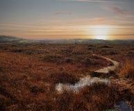 Sunset over Marshland royalty free stock image