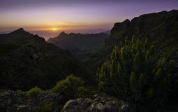 Sunset over Masca, Tenerife Royalty Free Stock Image