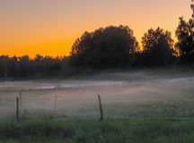 Sunset with fog. Sunset over meadow with fog Royalty Free Stock Images