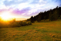 Sunset over the meadow landscape nature,warmy golden light outsi Royalty Free Stock Image
