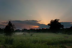 Sunset over the meadow under fog Stock Photos