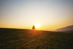 Sunset over meadows Royalty Free Stock Photo