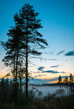 Sunset over mist in forest, Renko, Finland Stock Photos