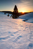 Sunset over mountain meadows in snow Royalty Free Stock Photography