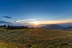 Sunset over mountain with rice field and stubble left after harv Royalty Free Stock Photography