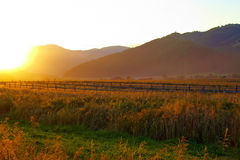 Sunset over mountains. Scenic view of golden sunset over mountain range in countryside Stock Images