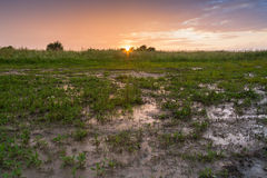 Sunset. Over the muddy filed Royalty Free Stock Photo