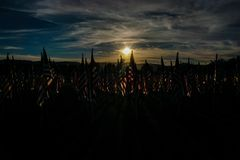 Field of Honor Royalty Free Stock Photography