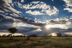 Sunset over the namibian grassland Stock Photography