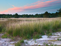 Sunset over Netherlands Nature Reserve Stock Photography
