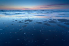 Sunset over North sea coast at low tide Royalty Free Stock Photo