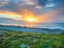 Sunset over the ocean. Grass shore ocean in sunset royalty free stock images