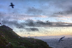 Sunset over ocean Islands 1. Aleuts-Commander island ridge. Pacific ocean royalty free stock photo