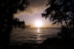 Sunset over the ocean seen through the trees Royalty Free Stock Image