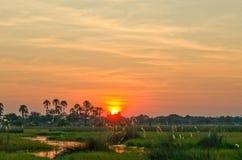 Sunset over the Okavango Delta in Botswana. A glorious, golden sunset over the Okavango Delta in Botswana Stock Photo
