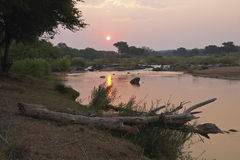 Sunset over the Olifants river Royalty Free Stock Image