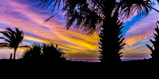 Sunset Over Palm Trees in a Caribbean Paradise Royalty Free Stock Photo