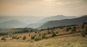 Sunset over the pasture of Golija mountain in Serbia Stock Images
