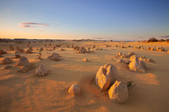 Sunset over the Pinnacles Desert, Western Australia Royalty Free Stock Photography