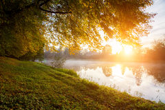 Sunset over the pond Royalty Free Stock Photography