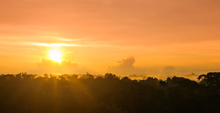 Sunset over rain forest by Amazon river in Brazil royalty free stock photos