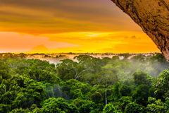 Sunset over the rainforest in Brazil stock images