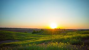 Sunset over rapeseed fields, time-lapse. Sunset over rapeseed fields, time lapse stock video