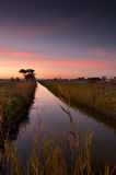 Sunset over rice field Royalty Free Stock Photography