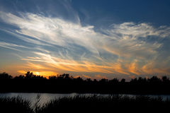 Sunset over the river. With bushes and trees royalty free stock photo