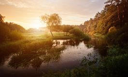 Sunset over the river in the forest. Beautiful bright dramatic sunset over river with forest along riverside stock photo