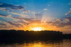 Sunset over river with forest Stock Photography