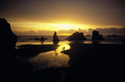 Sunset over rocky beach Royalty Free Stock Photography