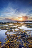 Sunset over rocky coastline Stock Image