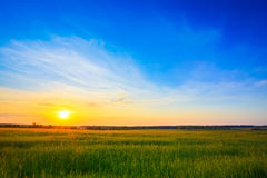 Sunset over rural countryside field Royalty Free Stock Photography