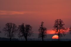 Sunset over rural field Royalty Free Stock Image
