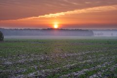 Sunset over rural field Royalty Free Stock Images