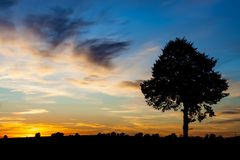 Sunset over rural field Royalty Free Stock Photography