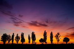Sunset over rural field Royalty Free Stock Photo