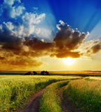 Sunset over rural road Stock Photography