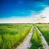 Sunset over rural road in green field Stock Image