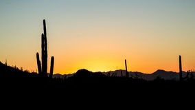 Sunset over Saguaro National Park Stock Images