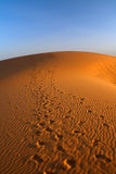 Sunset over Sahara desert Stock Image